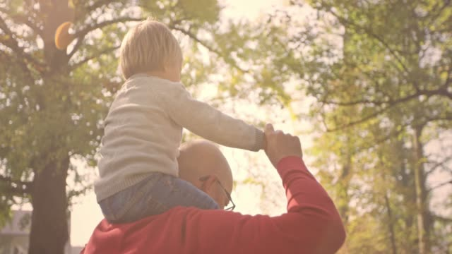 slo mo toddler sitting on his granddad's shoulders as they walk through the park - grandchild stock videos & royalty-free footage