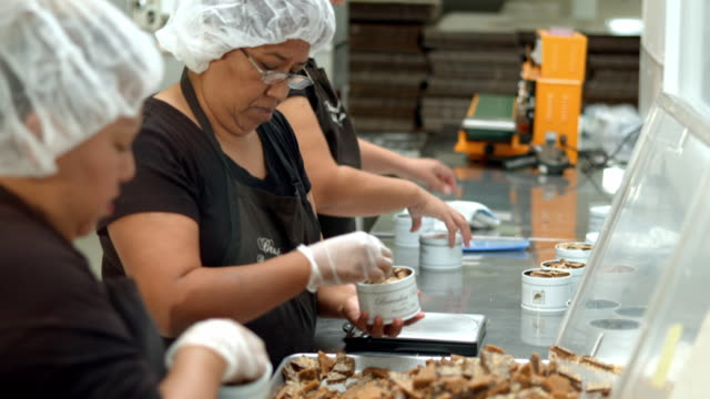 ms td  toffee bark picked from fresh pile and packed into tin cans while toffee canned weight is measured on scale by women workers wearing hair nets and gloves / rancho mirage, california, usa - haarnetz stock-videos und b-roll-filmmaterial