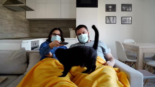 vídeos y material grabado en eventos de stock de juntos en cuarentena en casa, pandemia de virus corona, apoyo familiar - animal family