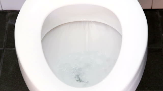 toilet flushing water - toilet stock videos and b-roll footage
