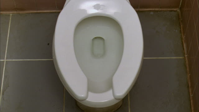 WS Toilet flushing with bubbling water