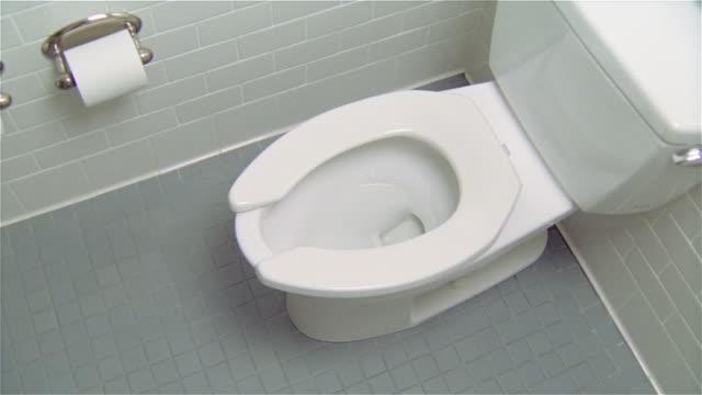 MS, HA, Toilet in white bathroom