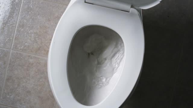vídeos de stock e filmes b-roll de toilet paper flushing down the toilet - casa de banho
