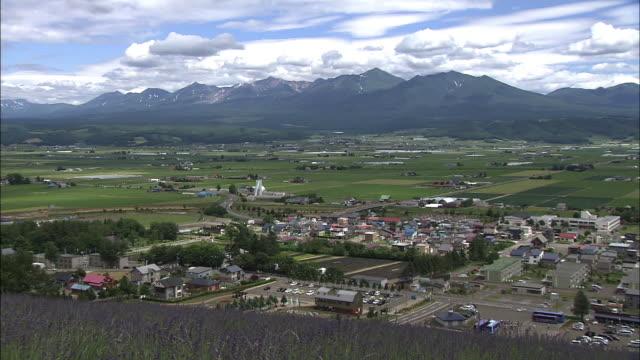 tokachi mountain ranges and nakafurano lavender garden, hokkaido, japan - satoyama scenery stock videos & royalty-free footage