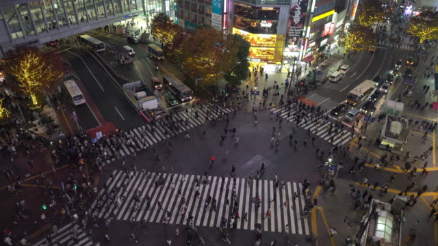 tokyo business center from top view at night - shibuya crossing stock videos & royalty-free footage