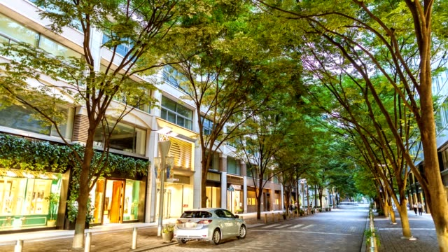 tokyo chiyoda ward street scenes and urban spaces with building and green at twilight 4k time lapse, summer,japan. - ショーウィンドウ点の映像素材/bロール
