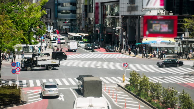 Tokyo City Pedestrian Traffic
