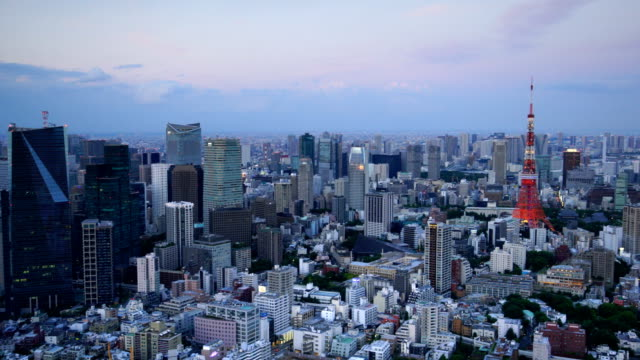 日本の東京の街のスカイライン - パン効果点の映像素材/bロール