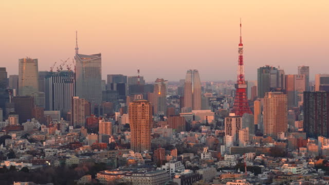 tokyo cityscape at sunset - observation point stock videos & royalty-free footage