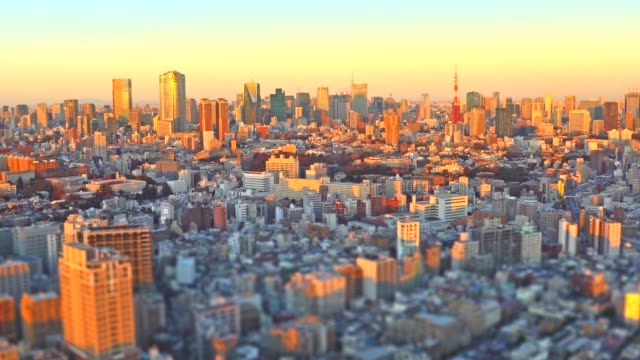 Tokyo Cityscape at sunset - Zoom out