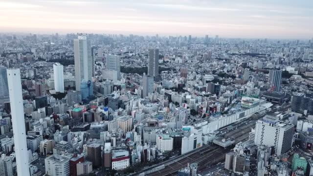 tokyo cityscape, japan - grau stock-videos und b-roll-filmmaterial