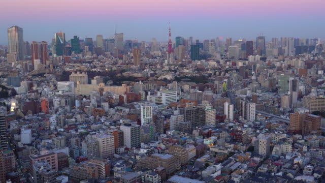 Tokyo Cityscape - Super Moon