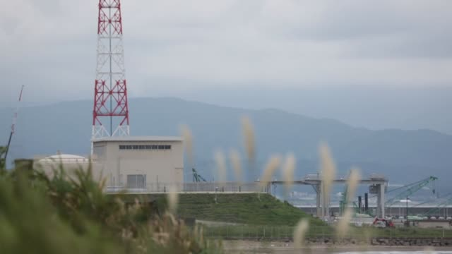 tokyo electric power co.'s kashiwazaki kariwa nuclear power station is seen through a wire fence in kashiwazaki city, niigata prefecture, japan, on... - sea grass plant stock-videos und b-roll-filmmaterial