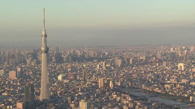 aerial, tokyo in morning glow, japan - スカイツリー点の映像素材/bロール