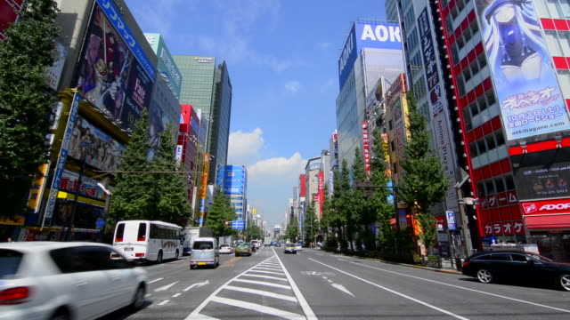 Tokyo Japan modern high tech area called Akihabara area to sell computer items and cartoon type games called Electric Town video games anime manga popular icons