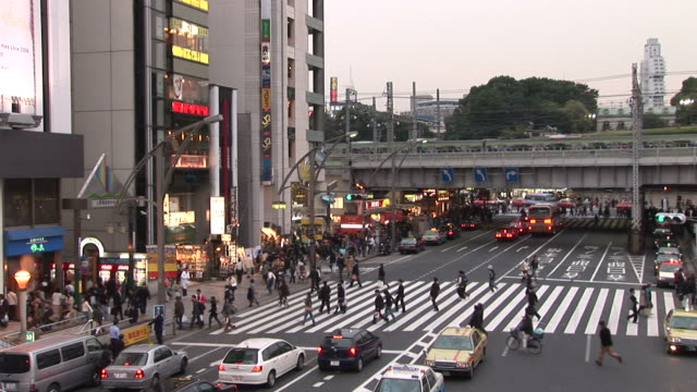 tokyo, japanview of a crowded city street in tokyo japan - zebramuster stock-videos und b-roll-filmmaterial