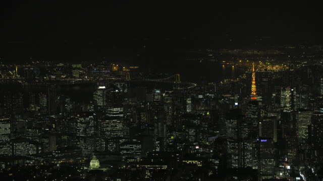 Tokyo night aerial image - Downtown and Tokyo Bay area