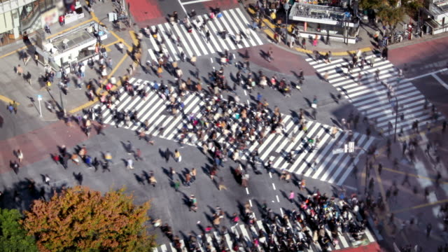tokyo shibuya crossing - zebra crossing stock videos & royalty-free footage