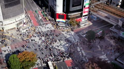 tokyo shibuya crossing - shibuya crossing stock videos & royalty-free footage