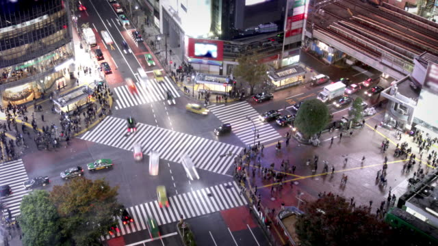 tokyo shibuya crossing - road junction stock videos & royalty-free footage