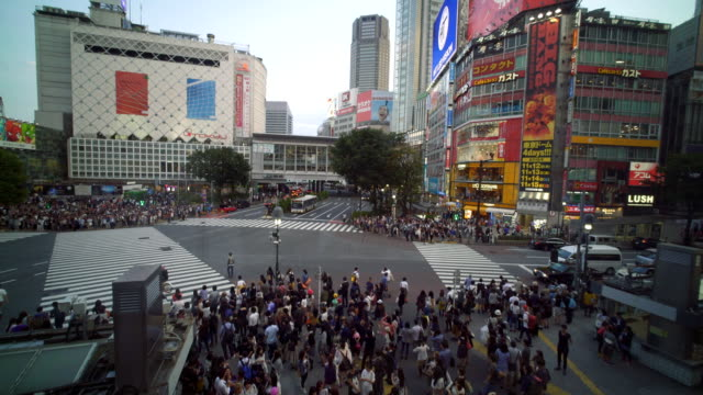 tokyo shibuya crossing - shibuya station stock videos and b-roll footage