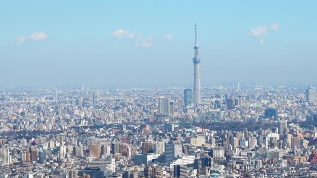 tokyo sky tree and tokyo buildings - スカイツリー点の映像素材/bロール