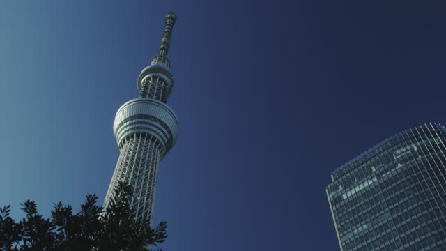 tokyo sky tree - low angle view stock-videos und b-roll-filmmaterial