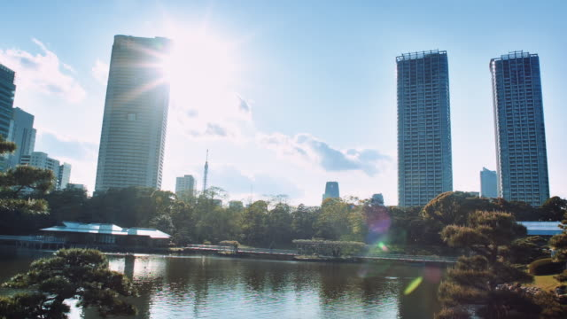ws, tokyo skyline seen from the hama-rikyu gardens, pond and teahouse in the foreground - food and drink establishment stock videos & royalty-free footage