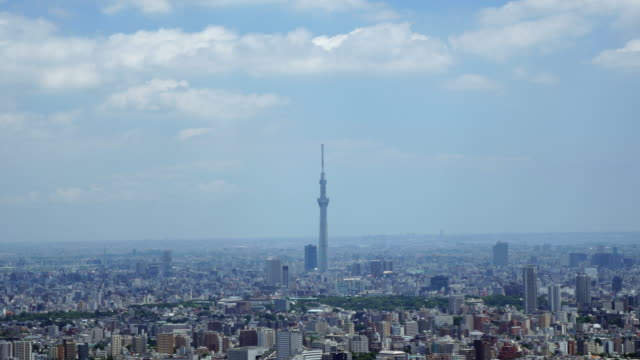 Tokyo SkyTree and buildings