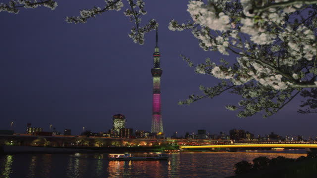 tokyo skytree tower and sumida river at night - 10 seconds or greater stock videos & royalty-free footage