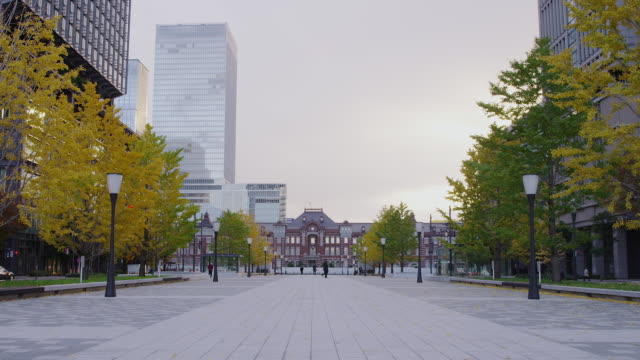 tokyo station and ginkgo trees - treelined stock videos & royalty-free footage