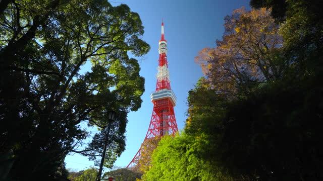 tokyo tower at green treetop, tokyo, japan - plusphoto stock videos & royalty-free footage
