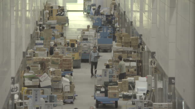 tokyo toyosu vegetable market - 職場点の映像素材/bロール