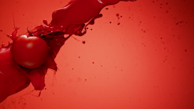 SLO MO Tomato flying through red color in the air