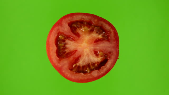 tomato rotates on green screen