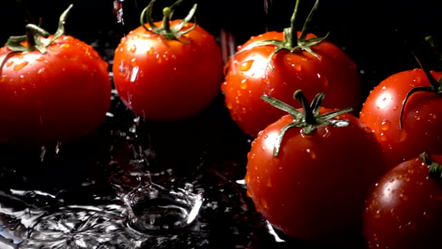tomato splashing into water on black background - bouncing stock videos & royalty-free footage