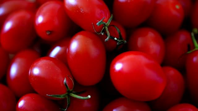 tomato (hd) - cherry tomato stock videos & royalty-free footage