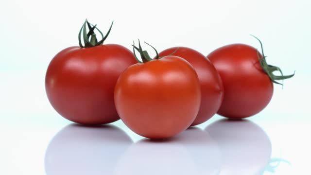 vidéos et rushes de tomato - quatre objets