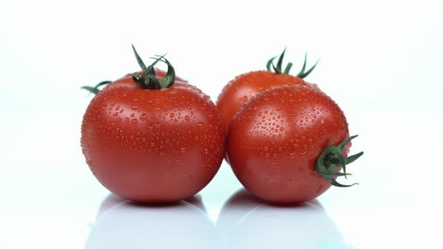 vídeos de stock e filmes b-roll de tomato - quatro objetos