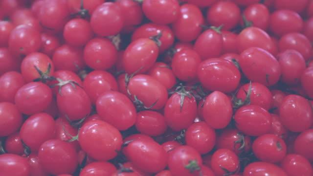 tomato vintage tone