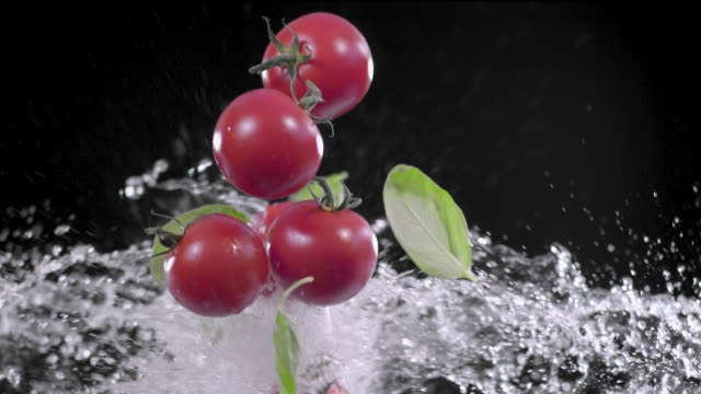 tomatoes and basil splashing with water super slow motion 1000 fps - basil stock videos & royalty-free footage