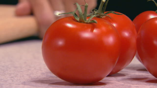 tomatoes and cilantro on counter - five objects stock videos & royalty-free footage