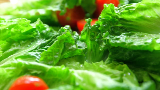 tomatoes falling on green lettuce - tomato stock videos & royalty-free footage