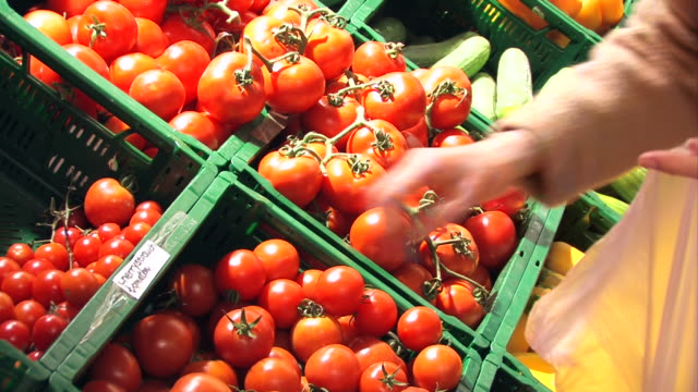 tomatoes in a supermarket - choosing stock videos and b-roll footage