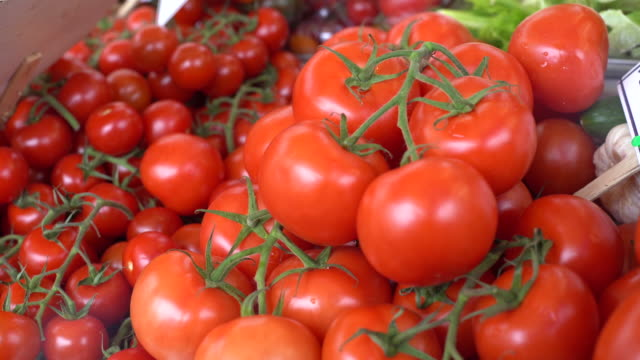tomatoes - market stall stock videos & royalty-free footage