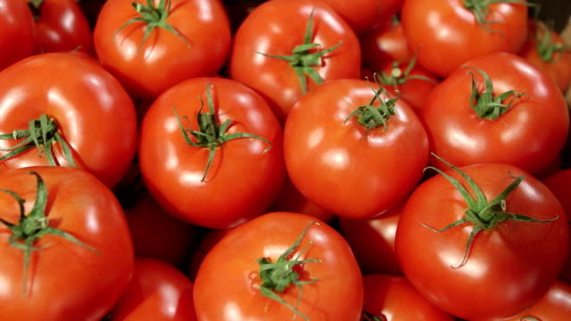 tomatoes - abundance stock videos & royalty-free footage