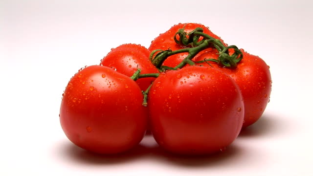 tomatoes - five objects stock videos & royalty-free footage