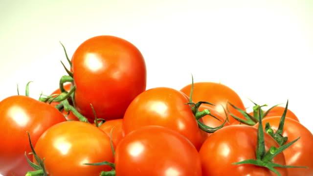 tomatos, studio shot - weiß stock videos & royalty-free footage