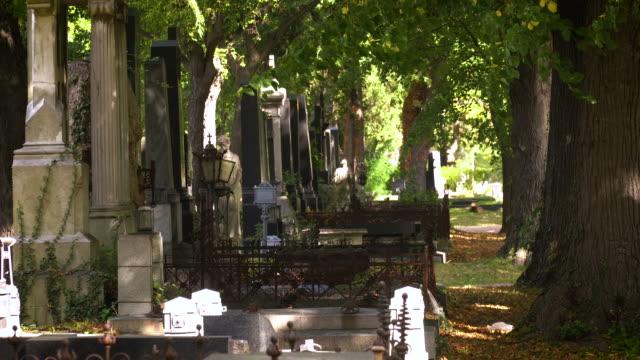 墓石ユダヤ人 - 墓所点の映像素材/bロール