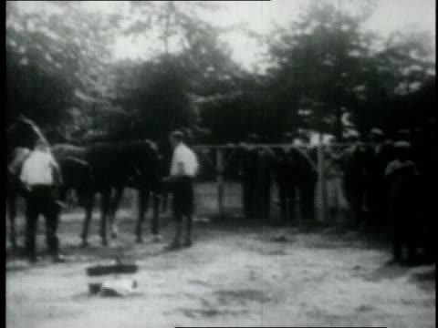 tommy hitchcock jr playing polo / new york united states - 1926 stock videos & royalty-free footage